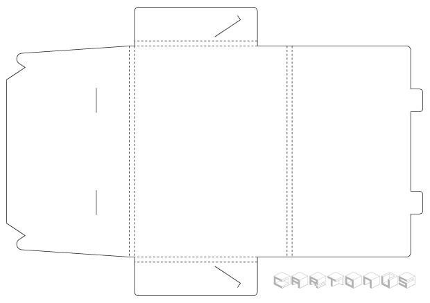 Cardboard envelope 250x180-2