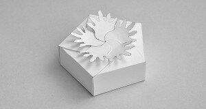 cartonus-pentagonal-board-petals-59x30-photo-f