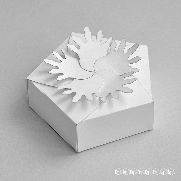 Pentagonal carton with board and petals 59x35. Photo