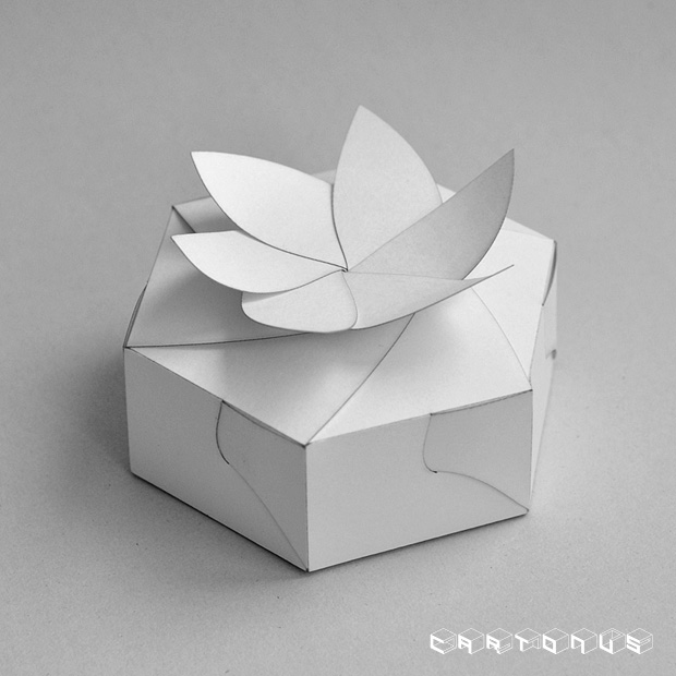 Hexagonal carton with board and petals 50x35. Photo