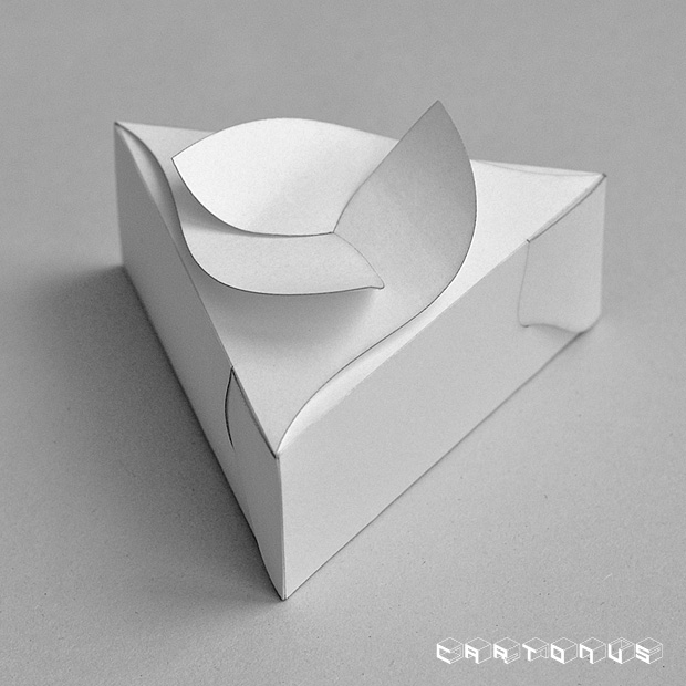 Triangular carton with board and curves petals 90x35. Photo