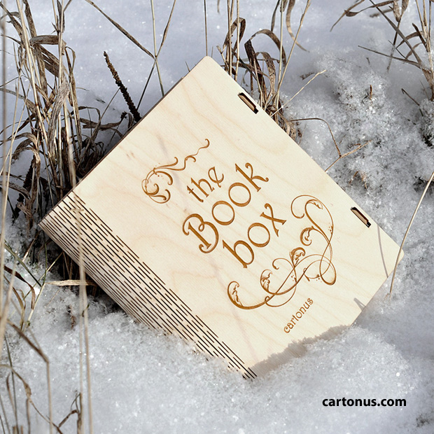 Book box in the snow